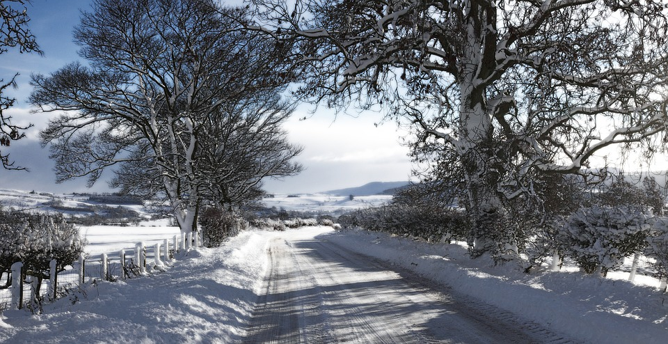 Ralli Ltd: Should we expect another visit from the 'Beast from the East'?! Banner